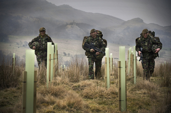 soldiers walk through new woodland at warcop 2011 250