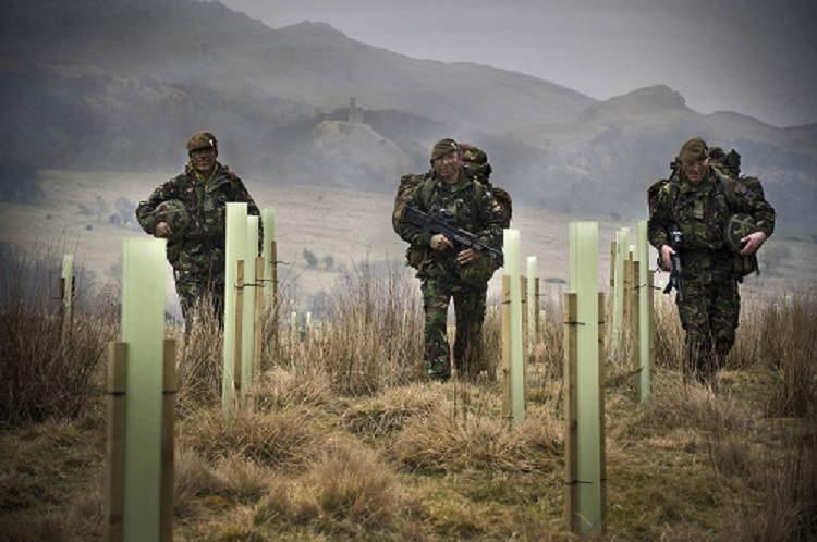 Soldiers walk through new woodland at training centre 750